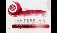 Vendemmia 2019 a 5 stelle per il Vino Nobile di Montepulciano
